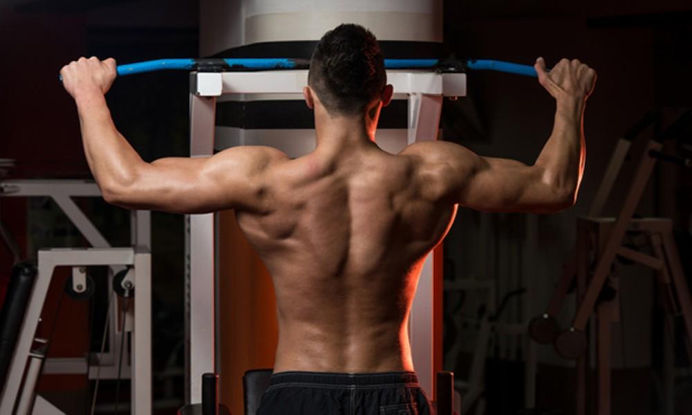 Mass Gainer Workout Plans